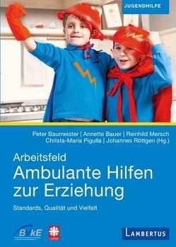 Arbeitsfeld Ambulante Hilfen der Erziehung von Bauer,  Annette, Baumeister,  Peter, Mersch,  Reinhild, Pigulla,  Christa-Maria, Röttgen,  Johannes