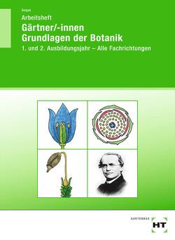 Arbeitsheft Gärtner/-innen Grundlagen der Botanik von Seipel,  Holger