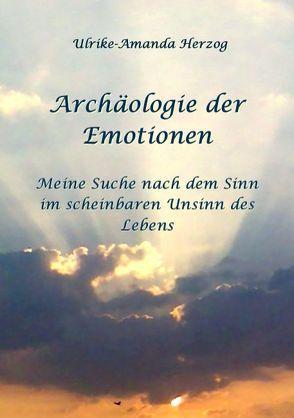 Archäologie der Emotionen von Herzog,  Ulrike A