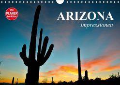Arizona. Impressionen (Wandkalender 2019 DIN A4 quer) von Stanzer,  Elisabeth