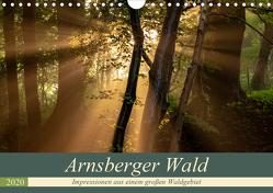 Arnsberger Wald (Wandkalender 2020 DIN A4 quer) von Franz Josef Hering,  Dr.