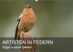 Artisten in Federn – Vögel unserer Gärten (Wandkalender 2019 DIN A2 quer) von Krebs,  Alexander