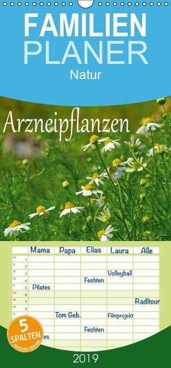 Arzneipflanzen – Familienplaner hoch (Wandkalender 2019 , 21 cm x 45 cm, hoch) von LianeM