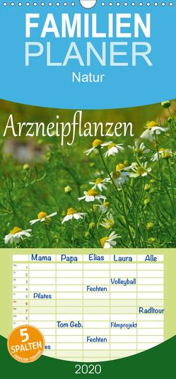 Arzneipflanzen – Familienplaner hoch (Wandkalender 2020 , 21 cm x 45 cm, hoch) von LianeM
