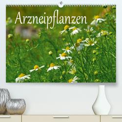 Arzneipflanzen (Premium, hochwertiger DIN A2 Wandkalender 2021, Kunstdruck in Hochglanz) von LianeM