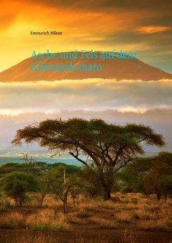Asche und Fels auf dem Kilimandscharo von Nilson,  Emmerich