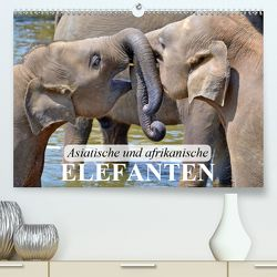 Asiatische und afrikanische Elefanten (Premium, hochwertiger DIN A2 Wandkalender 2020, Kunstdruck in Hochglanz) von Stanzer,  Elisabeth