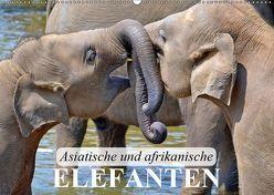 Asiatische und afrikanische Elefanten (Wandkalender 2019 DIN A2 quer) von Stanzer,  Elisabeth