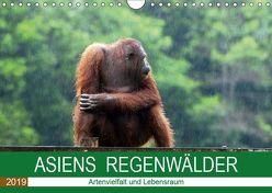 ASIENS REGENWÄLDER Artenvielfalt und Lebensraum (Wandkalender 2019 DIN A4 quer) von Gärtner,  Oliver