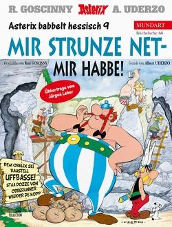 Asterix Mundart Hessisch IX von Goscinny,  René, Leber,  Jürgen, Uderzo,  Albert