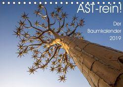 Astrein! – Der Baumkalender 2019 (Tischkalender 2019 DIN A5 quer) von van der Wiel,  Irma