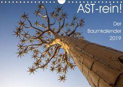 Astrein! – Der Baumkalender 2019 (Wandkalender 2019 DIN A4 quer) von van der Wiel,  Irma