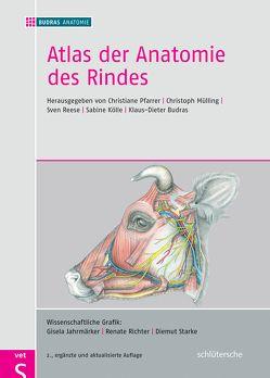Atlas der Anatomie des Rindes von Budras,  Klaus-Dieter, Mülling,  Christoph, Reese,  Sven