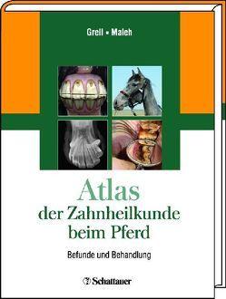 Atlas der Zahnheilkunde beim Pferd von Grell,  Martin, Maleh,  Souel