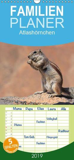Atlashörnchen – Familienplaner hoch (Wandkalender 2019 , 21 cm x 45 cm, hoch) von Hildenbrandt,  Denny