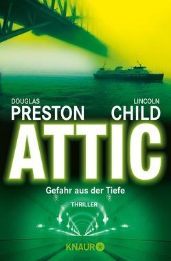 Attic von Child,  Lincoln, Preston,  Douglas