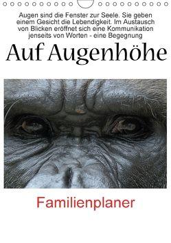 Auf Augenhöhe (Wandkalender 2018 DIN A4 hoch) von VB-Bildermacher,  k.A.