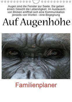 Auf Augenhöhe (Wandkalender 2019 DIN A4 hoch) von VB-Bildermacher