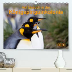 Auf Besuch in der Königspinguinkolonie (Premium, hochwertiger DIN A2 Wandkalender 2020, Kunstdruck in Hochglanz) von Utelli,  Anna-Barbara