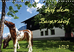 Auf dem Bauernhof – Der Zittrauerhof im Gasteinertal (Wandkalender 2020 DIN A4 quer) von N.,  N.
