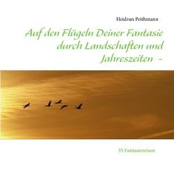 Auf den Flügeln Deiner Fantasie durch Landschaften und Jahreszeiten von Peithmann,  Heidrun