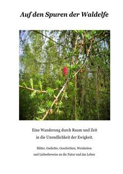 Auf den Spuren der Waldelfe von Dorfmann,  Eva