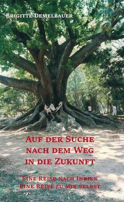 Auf der Suche nach dem Weg in die Zukunft von Demelbauer,  Brigitte