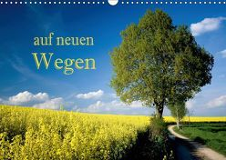 Auf neuen Wegen (Wandkalender 2019 DIN A3 quer) von Pfleger,  Hans
