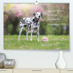 Auf vier Pfoten durch vier Jahreszeiten – Rassehunde (Premium, hochwertiger DIN A2 Wandkalender 2020, Kunstdruck in Hochglanz) von Moswald,  Ulla