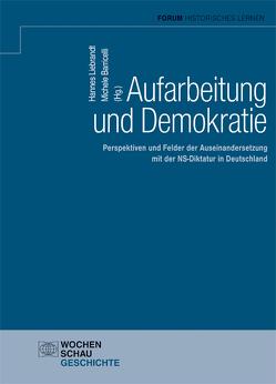 Aufarbeitung und Demokratie von Barricelli,  Michele, Liebrandt,  Hannes