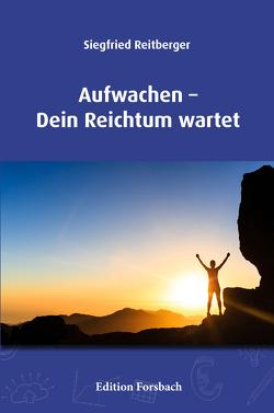Aufwachen – Dein Reichtum wartet von Reitberger,  Siegfried