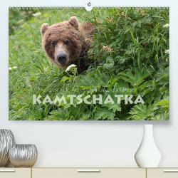 Aug in Aug mit den Braunbären in Kamtschatka (Premium, hochwertiger DIN A2 Wandkalender 2020, Kunstdruck in Hochglanz) von Peyer,  Stephan