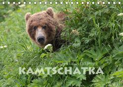 Aug in Aug mit den Braunbären in Kamtschatka (Tischkalender 2019 DIN A5 quer) von Peyer,  Stephan