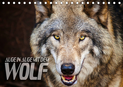 Auge in Auge mit dem Wolf (Tischkalender 2019 DIN A5 quer) von Bleicher,  Renate