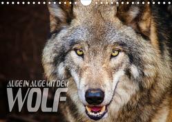 Auge in Auge mit dem Wolf (Wandkalender 2019 DIN A4 quer) von Bleicher,  Renate