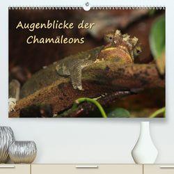 Augenblicke der Chamäleons (Premium, hochwertiger DIN A2 Wandkalender 2020, Kunstdruck in Hochglanz) von Chawera