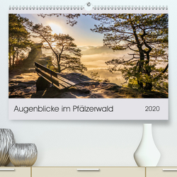 Augenblicke im Pfälzerwald (Premium, hochwertiger DIN A2 Wandkalender 2020, Kunstdruck in Hochglanz) von Flatow,  Patricia