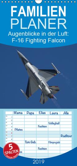 Augenblicke in der Luft: F-16 Fighting Falcon – Familienplaner hoch (Wandkalender 2019 , 21 cm x 45 cm, hoch) von Prokic,  Aleksandar