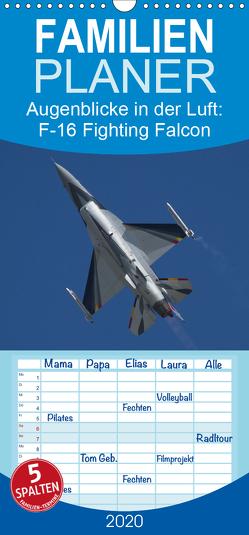 Augenblicke in der Luft: F-16 Fighting Falcon – Familienplaner hoch (Wandkalender 2020 , 21 cm x 45 cm, hoch) von Prokic,  Aleksandar
