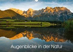 Augenblicke in der Natur (Wandkalender 2018 DIN A3 quer) von Faulhaber,  Birgit