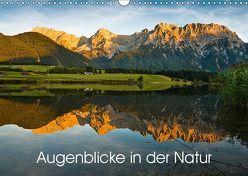 Augenblicke in der Natur (Wandkalender 2019 DIN A3 quer) von Faulhaber,  Birgit