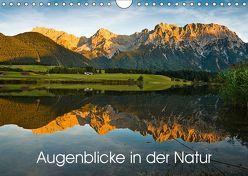 Augenblicke in der Natur (Wandkalender 2019 DIN A4 quer) von Faulhaber,  Birgit
