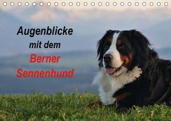 Augenblicke mit dem Berner Sennenhund (Tischkalender 2019 DIN A5 quer) von Hunscheidt,  Hubert