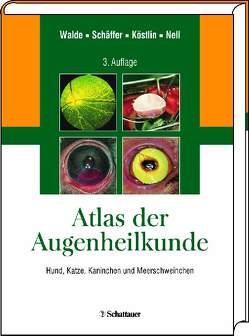 Augenheilkunde von Köstlin,  Roberto, Nell,  Barbara, Schäffer,  Ekkehard, Walde,  Ingo