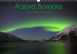 Aurora Borealis: Polarlichter in Norwegen (Wandkalender 2020 DIN A3 quer) von Weiß,  Elmar