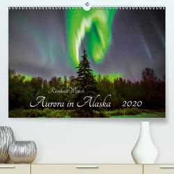 Aurora in Alaska (Premium, hochwertiger DIN A2 Wandkalender 2020, Kunstdruck in Hochglanz) von Wittich,  Reinhold