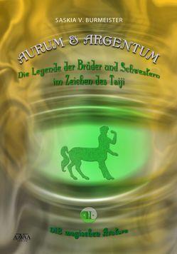 Aurum und Argentum (2) – Die magischen Avatare (Großdruck) von Burmeister,  Saskia V.