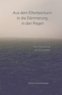 Aus dem Elfenbeinturm in die Dämmerung, in den Regen von Dürrenberger,  Dominik