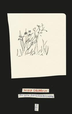 Aus den Skizzenbüchern von Erlbruch,  Wolf, Platthaus,  Andreas