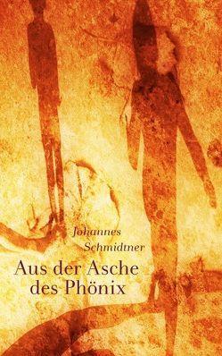 Aus der Asche des Phönix von Schmidtner,  Johannes